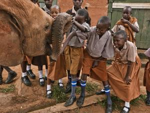 An Elephant Orphan Greets Schoolchildren Visiting Tsavo National Park by Michael Nichols