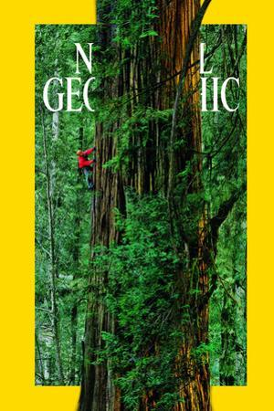 Cover of the October, 2009 National Geographic Magazine by Michael Nichols