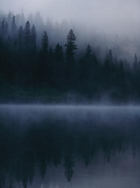 Scenic View Near Mount Shasta by Michael Nichols