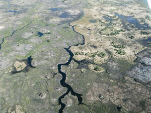 Aerial view of the Okavango Delta during drought conditions in early fall, Botswana by Michael Nolan