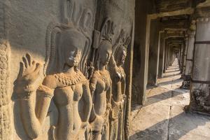 Bas-Relief Carvings of Apsara, Angkor Wat, Angkor, UNESCO World Heritage Site, Siem Reap, Cambodia by Michael Nolan