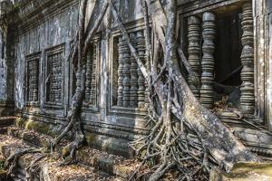 Beng Mealea Temple by Michael Nolan