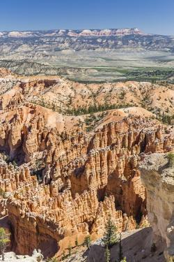 Bryce Canyon Amphitheater from Bryce Point by Michael Nolan
