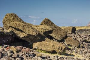 Fallen Moai at Ahu Akahanga by Michael Nolan