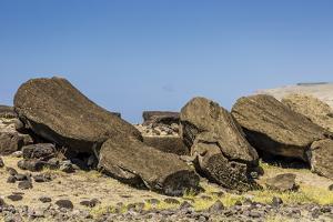 Fallen Moai at Ura Uranga Te Mahina Ceremonial Site by Michael Nolan