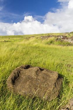 Fallen Moai Head at the Archaeological Site at Ahu Vinapu by Michael Nolan