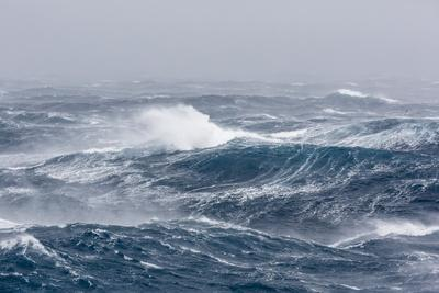 Gale Force Westerly Winds Build Large Waves in the Drake Passage, Antarctica, Polar Regions