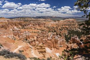 Hikers amongst hoodoo formations on the Sunrise Point Trail in Bryce Canyon National Park, Utah, Un by Michael Nolan