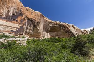 Navajo sandstone in Lower Calf Creek Falls Trail, Grand Staircase-Escalante National Monument, Utah by Michael Nolan
