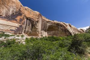 Navajo sandstone in Lower Calf Creek Falls Trail, Grand Staircase-Escalante National Monument, Utah by Michael Nolan