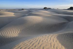 Patterns in the dunes at Sand Dollar Beach, Magdalena Island, Baja California Sur, Mexico by Michael Nolan