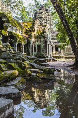Reflections at Ta Prohm Temple (Rajavihara) by Michael Nolan