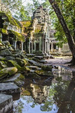 Reflections at Ta Prohm Temple (Rajavihara) by Michael Nolan