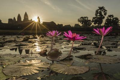 Sunrise over the West Entrance to Angkor Wat, Angkor, Siem Reap, Cambodia by Michael Nolan