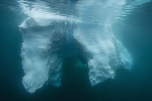 Underwater View of Glacial Ice Near Wiencke Island, Antarctica, Polar Regions by Michael Nolan