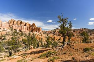 View of hoodoo formations from the Fairyland Trail in Bryce Canyon National Park, Utah, United Stat by Michael Nolan