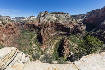 View of the valley floor from Angel's Landing Trail in Zion National Park, Utah, United States of A by Michael Nolan