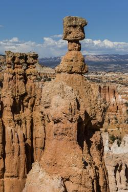 View of Thor's Hammer from the Navajo Loop Trail in Bryce Canyon National Park, Utah, United States by Michael Nolan