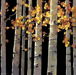 Aspen Grove by Michael O'Toole