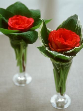 Red Roses in Glass Vases by Michael Paul