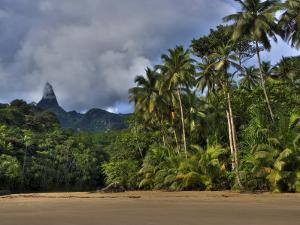 Volcanic Mountains and Palm Trees Along the Beach on Principe Island by Michael Polzia