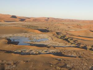 Water Pooled in the Desert by Michael Polzia