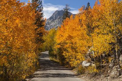 Access Road to Sabrina Lake, Eastern Sierra, Bishop Creek, California