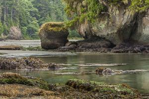 Crescent Beach Bay and Island, Low Tide, Olympic Peninsula, Washington by Michael Qualls