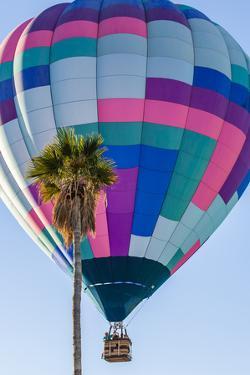Lake Havasu Balloon Festival. Soaring Hot Air Balloon by Michael Qualls