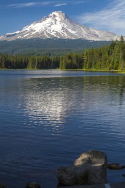 Mt. Hood, Oregon. Reflected and Shining over Trillium Lake by Michael Qualls