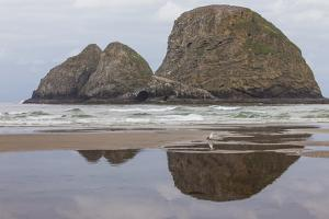 Oceanside, Oregon. Three Arch Rocks Seen from the Beach at Low Tide by Michael Qualls