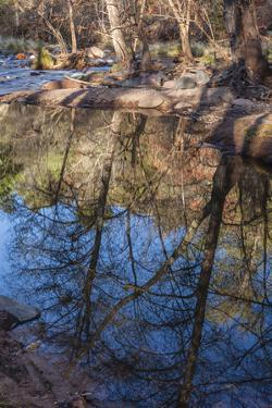 Reflections in Oak Creek at Low Water by Michael Qualls