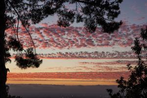 Sundown and Pink Clouds in La Mesa, California at Sunset by Michael Qualls