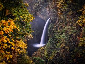 Waterfall and Fall Colors, Columbia River Gorge by Michael Riffle