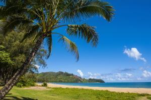 Bay of Hanalai on the Island of Kauai, Hawaii, United States of America, Pacific by Michael Runkel