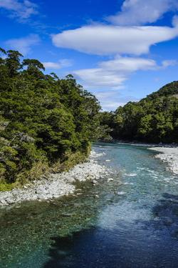 Beautiful Haast River, Haast Pass, South Island, New Zealand, Pacific by Michael Runkel