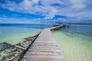 Boat Pier on Carp Island, One of the Rock Islands, Palau, Central Pacific, Pacific by Michael Runkel