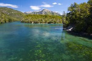 Crystal Clear Water in the Los Alerces National Park, Chubut, Patagonia, Argentina, South America by Michael Runkel