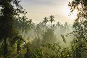 Early Morning View of the Countryside Surrounding the Temple Complex of Borobodur, Java, Indonesia by Michael Runkel