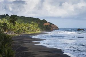 East Coast of Dominica, West Indies, Caribbean, Central America by Michael Runkel