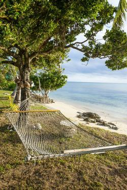 Hammock on a Beach in Ha'Apai, Tonga, South Pacific by Michael Runkel