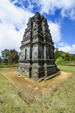 Hindu Dieng Temple Complex, Dieng Plateau, Java, Indonesia, Southeast Asia, Asia by Michael Runkel