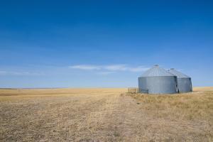 Lonely Garner in a Field by Michael Runkel