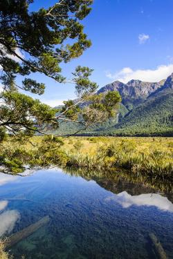 Mountains Reflecting in the Mirror Lakes, Eglinton Valley, Fiordland National Park by Michael Runkel