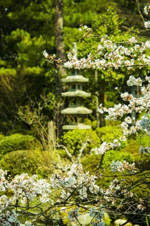 Okazaki Park in the Heian Jingu Shrine, Kyoto, Japan, Asia