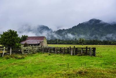 Old Farm in a Moody Atmosphere, West Coast around Haast, South Island, New Zealand, Pacific by Michael Runkel