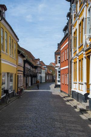 Old Historical Houses in Ribe, Denmark's Oldest Surviving City, Jutland, Denmark by Michael Runkel