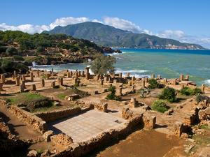 Roman Ruins of Tipasa, on the Algerian Coast, Algeria, North Africa, Africa by Michael Runkel