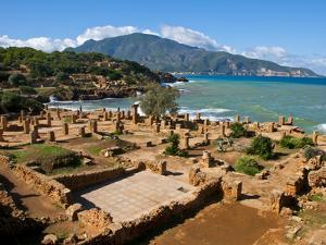 Roman Ruins of Tipasa, on the Algerian Coast, Algeria, North Africa, Africa by Michael Runkel