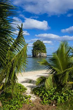 Single Rock at Coconut Point on Tutuila Island, American Samoa, South Pacific, Pacific by Michael Runkel